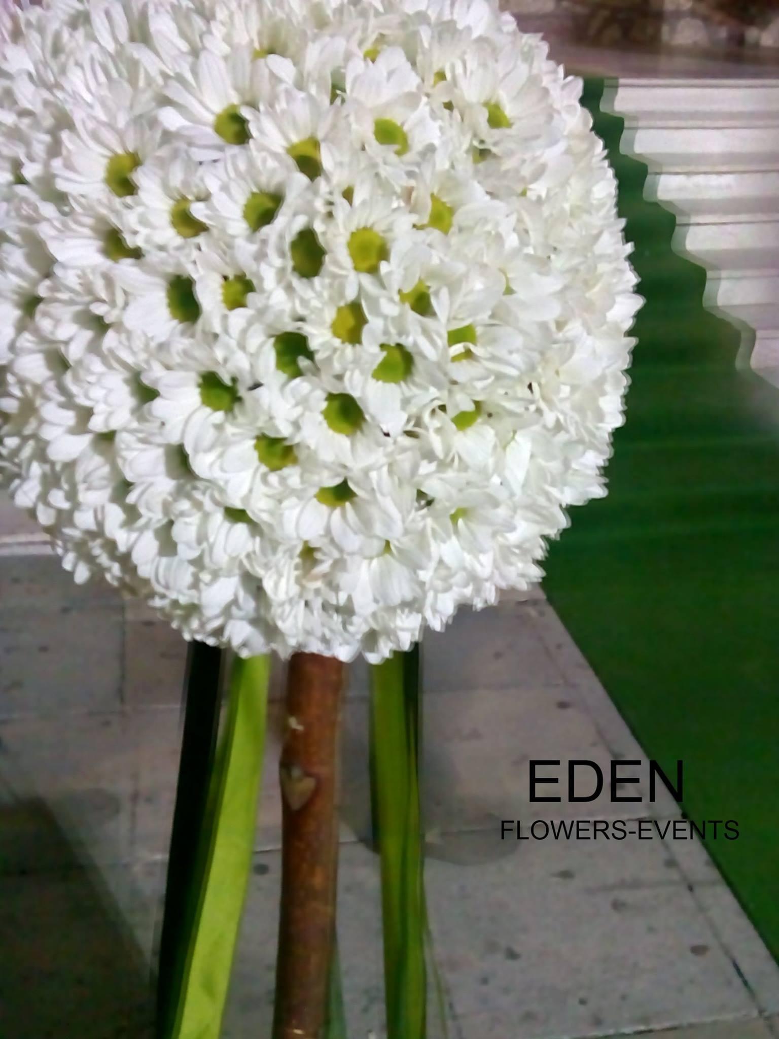 EDEN FLOWERS |  Στολισμοί Εκκλησιών, Νυφικών Αυτοκινήτων, Χώρων Δεξιώσεων, Νυφικές Ανθοδέσμες, φυτά, ανθοστολισμοί